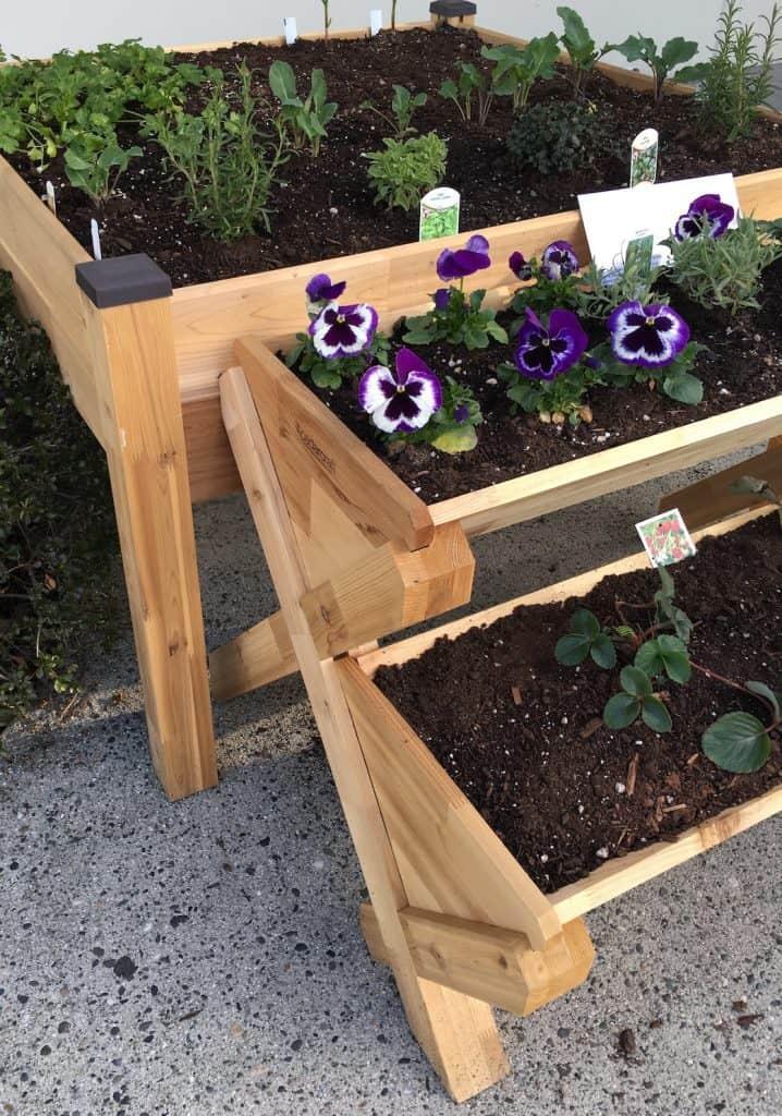 Easy to Reach Container Garden