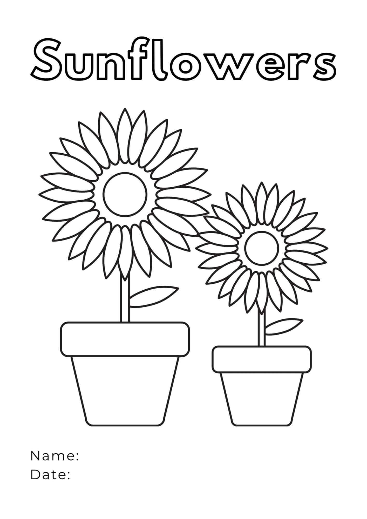 Sunflower Coloring Worksheet